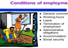 https://www.jobs263.com/wp-content/uploads/2021/01/Conditionsofemployment-236x168.png